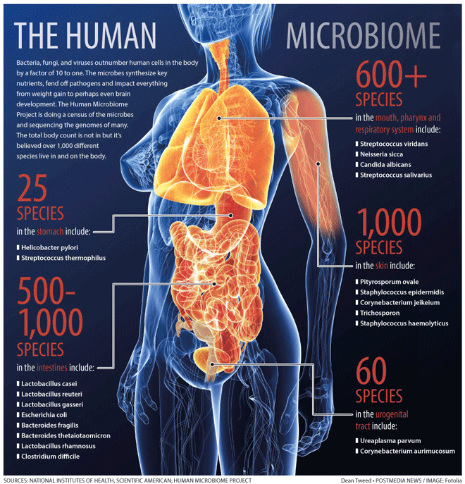 How your microbiome determines your health