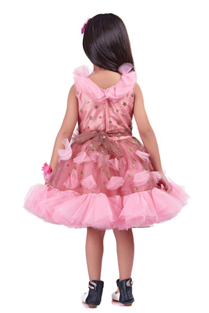 English Pink Star  Party  Frock