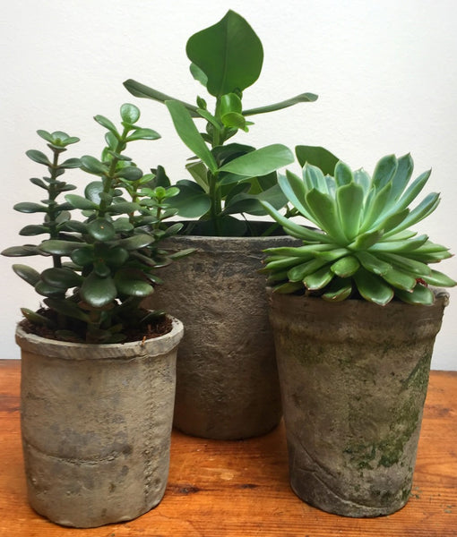 Rustic Flower Pots - Dusty Black