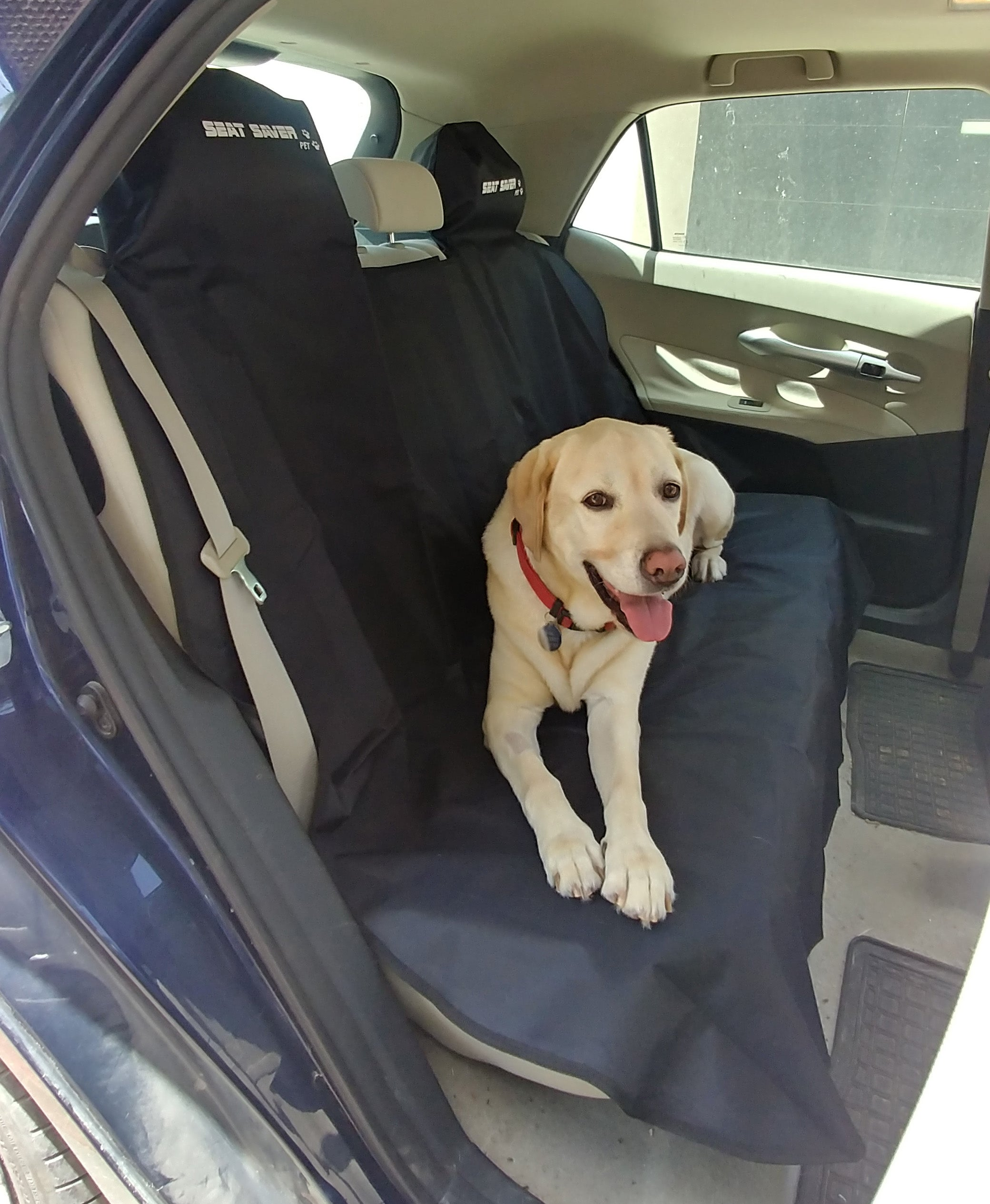 Pet SEAT-SAVER Rear Car Seat Cover - Black