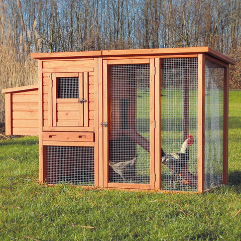 Best Selling Chicken Coops