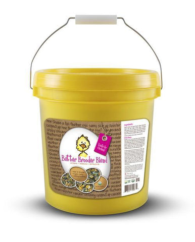 Treats for Chickens - Better Brooder Blend 16 oz Bucket - That Chicken Coop