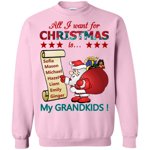 Christmas Wish (New Design) Sweatshirt/Hoodies