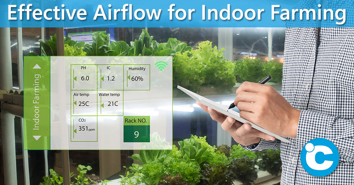 Effective Airflow for Indoor Farming