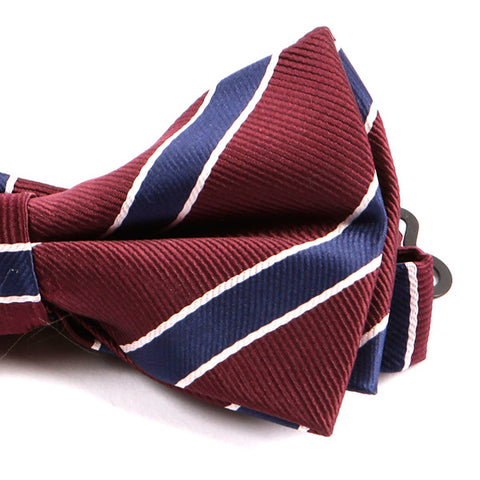 Red & Navy Striped Bow Tie - Handmade Limited Edition Ties by Tie Doctor