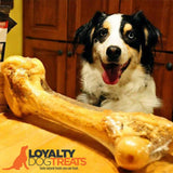 XL Smoked/Natural Beef Femur Bone - LoyaltyDogTreats
