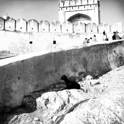 Black And White Photography Prints Forts Of Rajasthan
