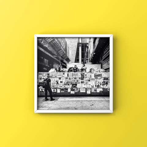 Reporting Live From The Jungle | Wall Art Decor Prints | Taken during the Umbrella Movement Protests in Hong Kong - House Of Flux