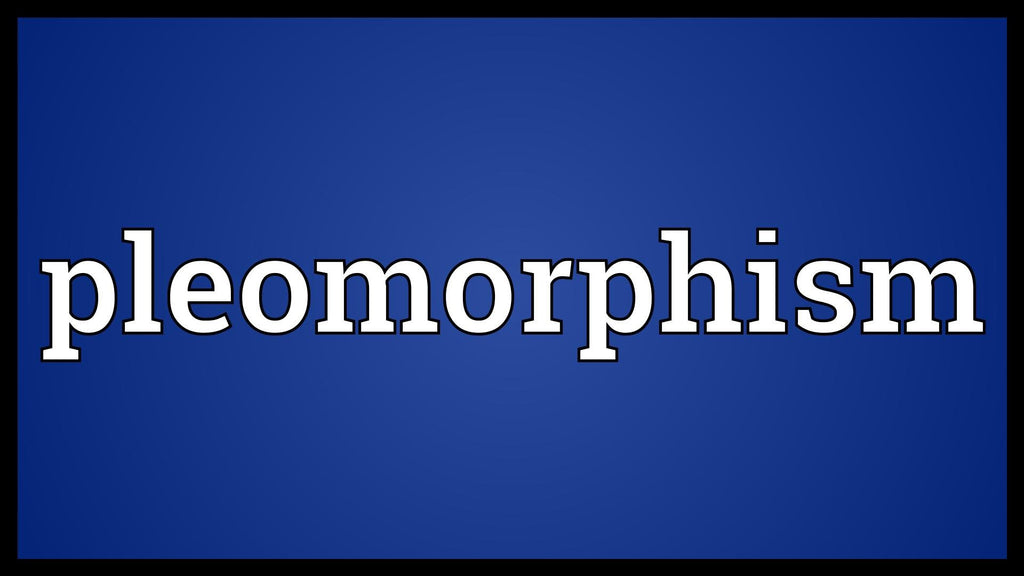 WHAT IS PLEOMORPHISM?