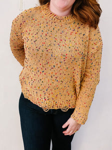 Kendall Confetti Sweater in Brown