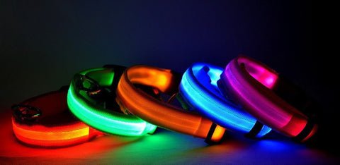 Pet Safety LED Night Glow Collar - For Cats or Dogs!  (7 Colors)