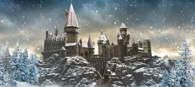 Harry Potter - Collektor Box - December 2017
