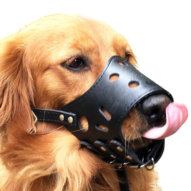 Adjustable Leather Dog Muzzle - Toyzor.com