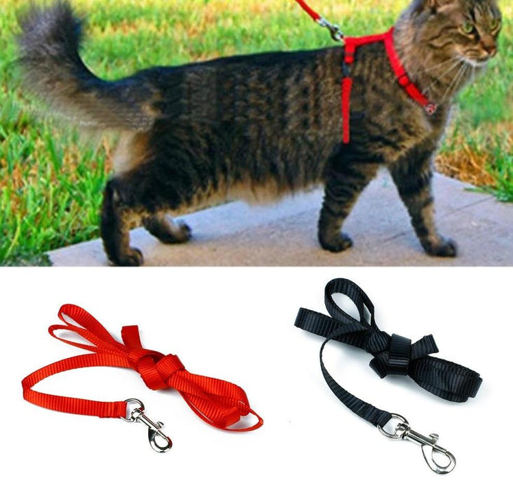 Cat Adjustable Pet Traction Harness Belt And Leash Halter Collar - Toyzor.com