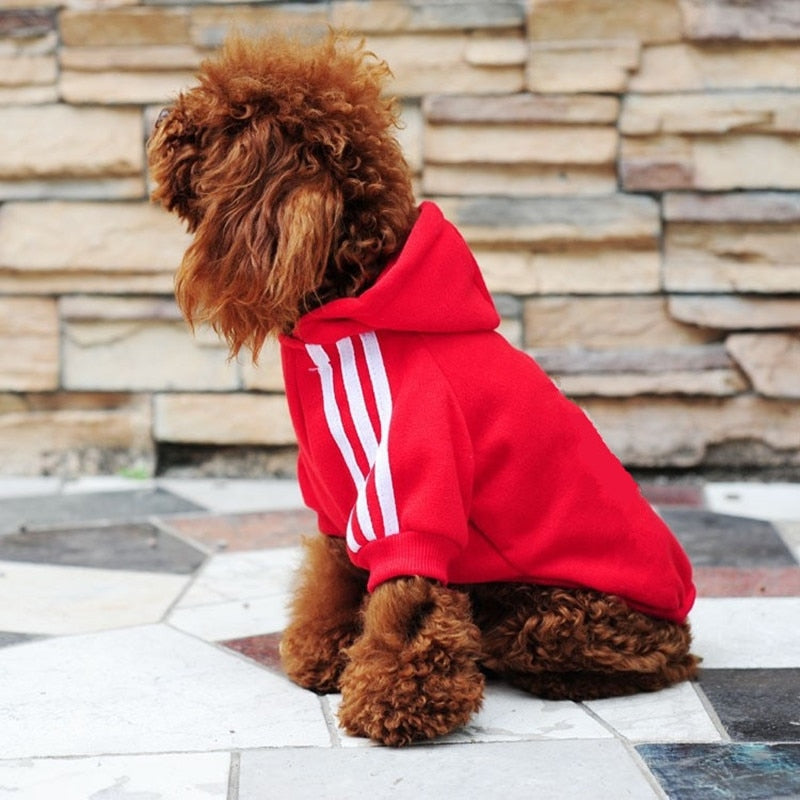 Autumn Winter Dog Clothes - Toyzor.com