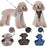 Dog Harness Leash Set Pet Accessories