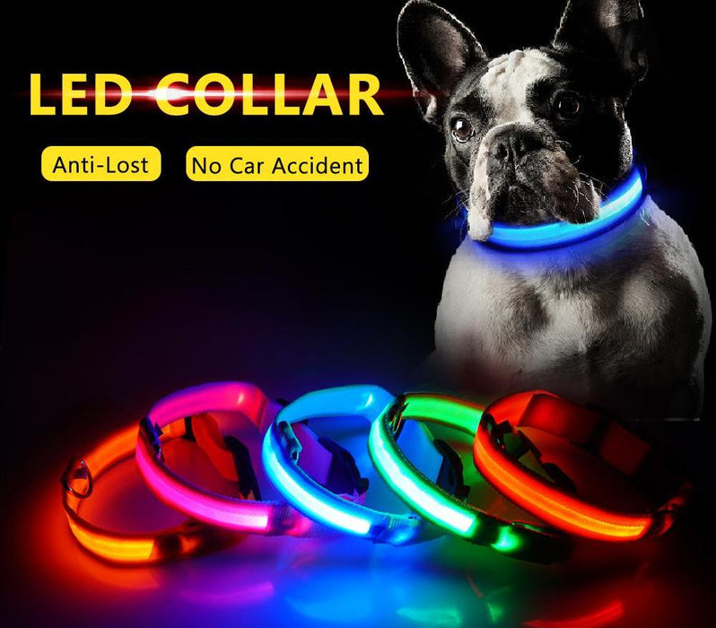 USB Charging LED Dog Collar Anti-Lost For Dogs/Puppy at Night