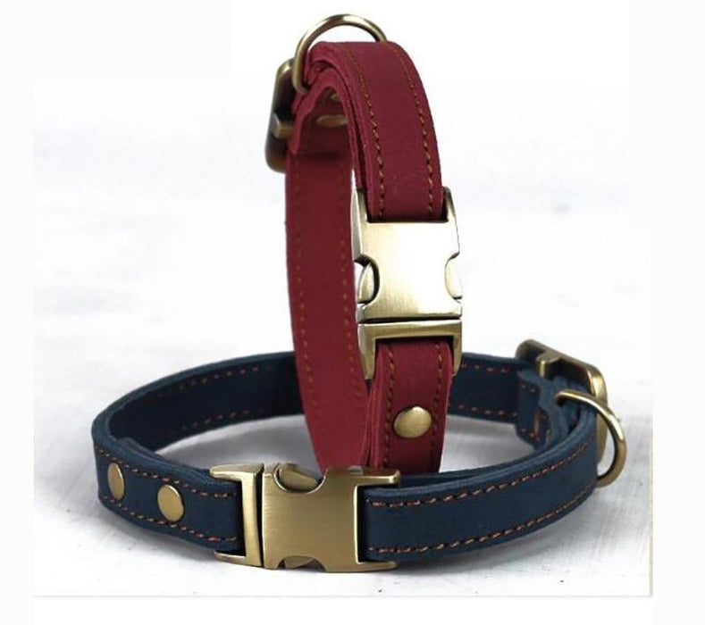 Collar Outdoor Cushion Cat Small Dog Collars Luxury Best Genuine Leather