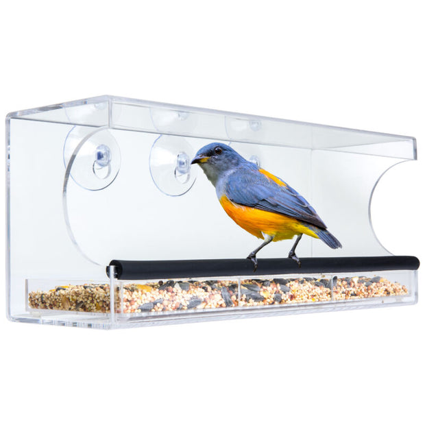 Clear Window Bird Feeder w/ Removable Tray