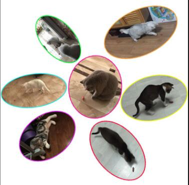 Dog Cat Toy interactive electronic Cockroach intelligence training