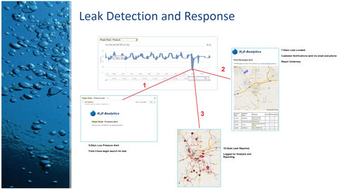 Water leak detection and response