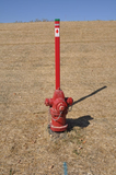Rhino TriView Fire Hydrant Marker Posts