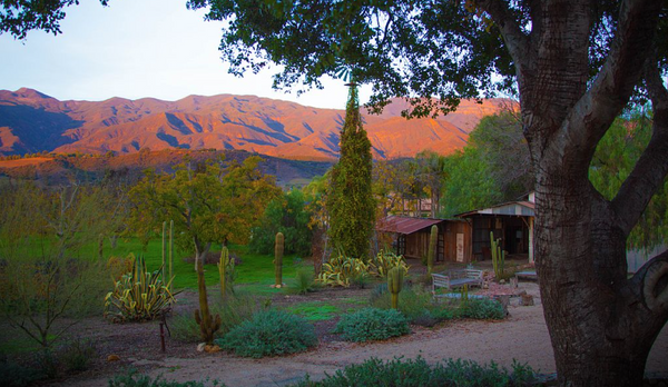 Ojai, CA 95hr Teacher Training Intensive
