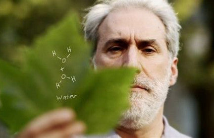 Artificial Leaf: Using artificial photosynthesis to produce clean energy