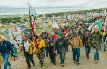 350.org: Stop the Keystone and Dakota Access Pipelines campaign