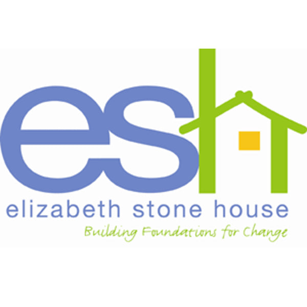The Elizabeth Stone House: Helping families and individuals of domestic violence