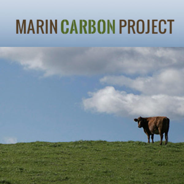 Marin Carbon Project: Improving Soil to Reverse Climate Change