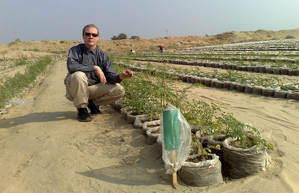 NanoClay: Turning sandy soil into fertile soil