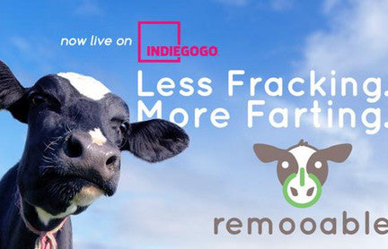 ReMooable: Sustainable fuel from animal biogas