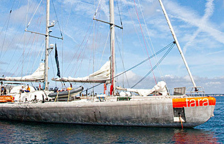 Tara: A schooner for the planet