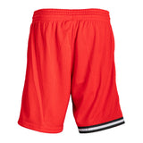 Mitchell & Ness Miami HEAT Swingman Shorts Red - 2