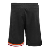 Mitchell & Ness Youth Hardwood Classic Swingman Shorts - 2