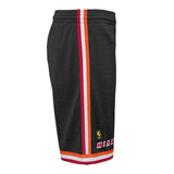 Mitchell & Ness Youth Hardwood Classic Swingman Shorts - 3