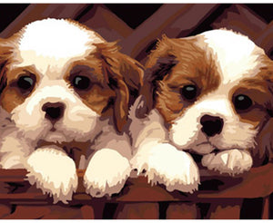 DIY Painting By Numbers - Two Cute Puppies