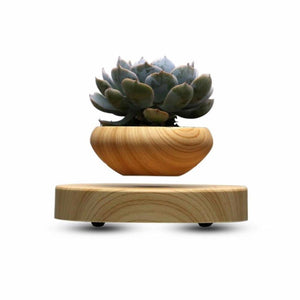 Magnetic Levitating Floating Plant Pot - SuperShopSale.com