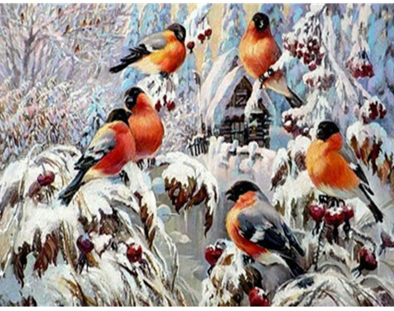 DIY Painting By Numbers - Birds and Snow