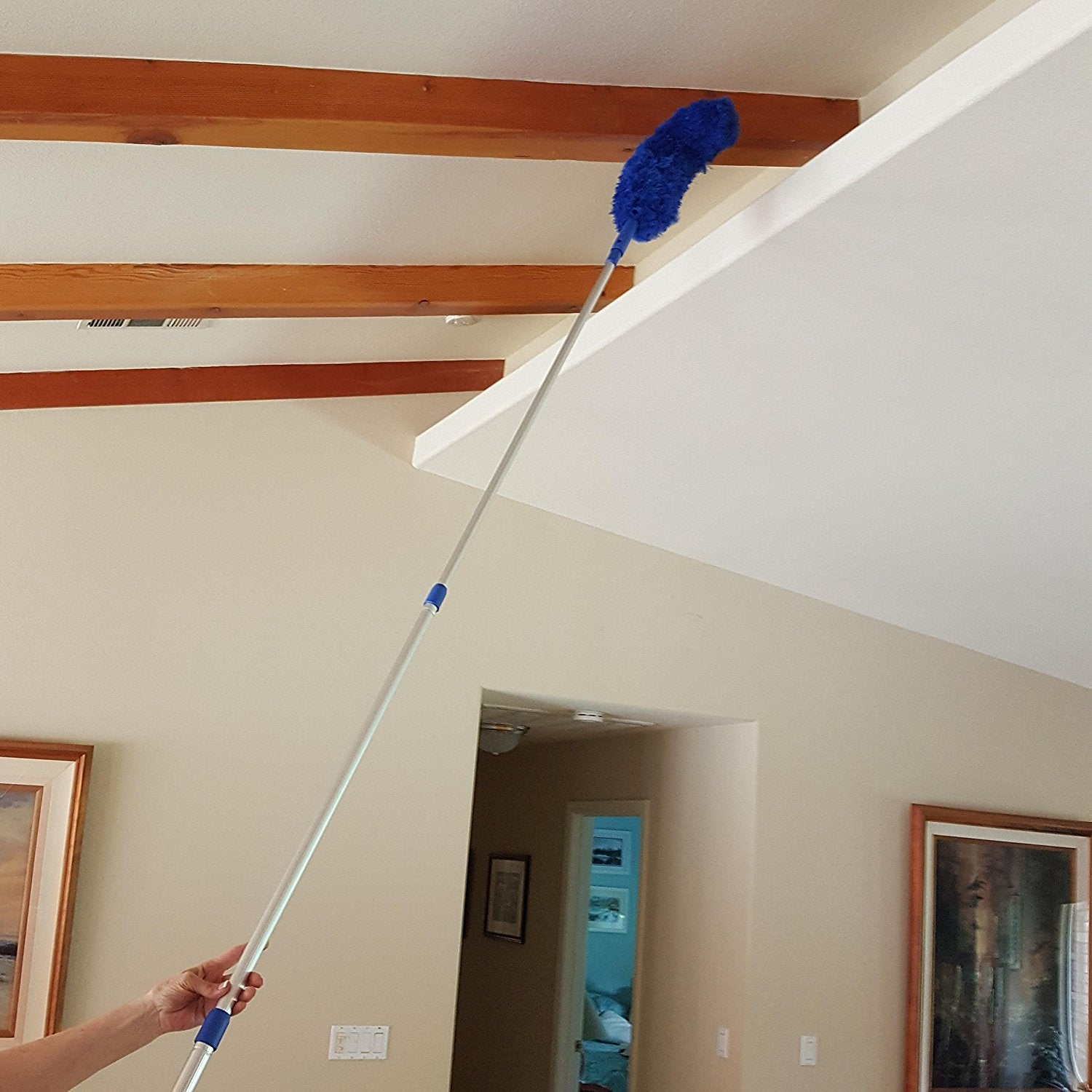 Extension Rod & Blue Extension Duster, Extend 18-20 feet - Touch Of ...