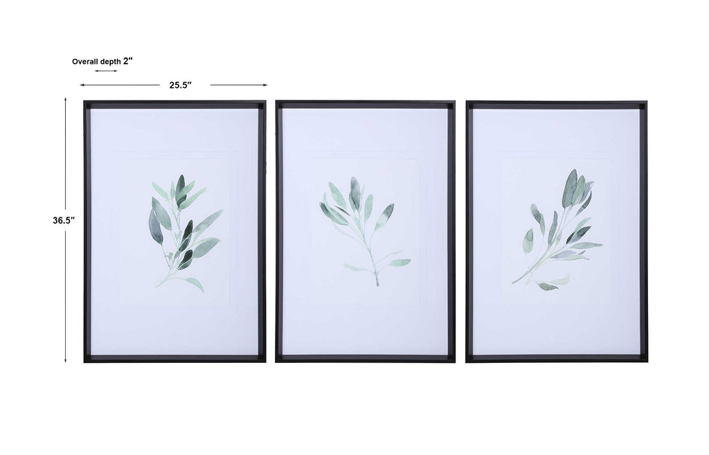 Simple Sage Framed Prints - Set of 3 - The Hive Experience