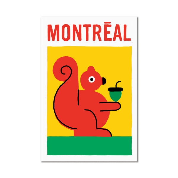 Montreal Squirrel