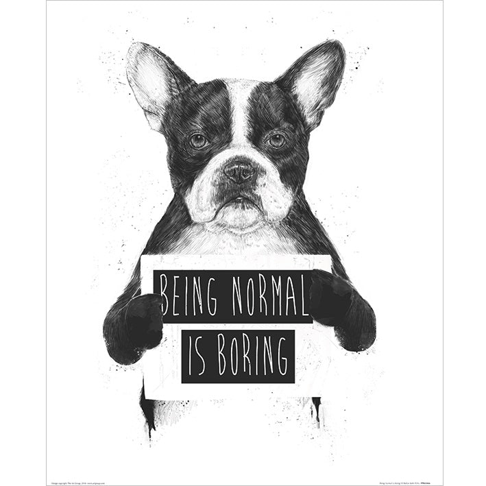 Balazs Solti Being Normal is Boring Art Print - 40 x 50cm