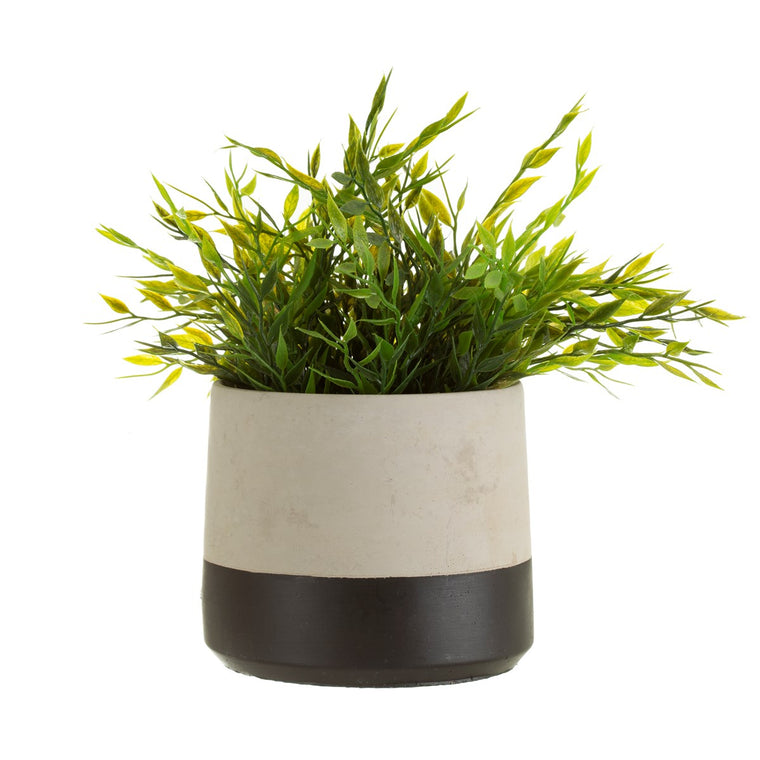 Black Dip Cement Plant Pot