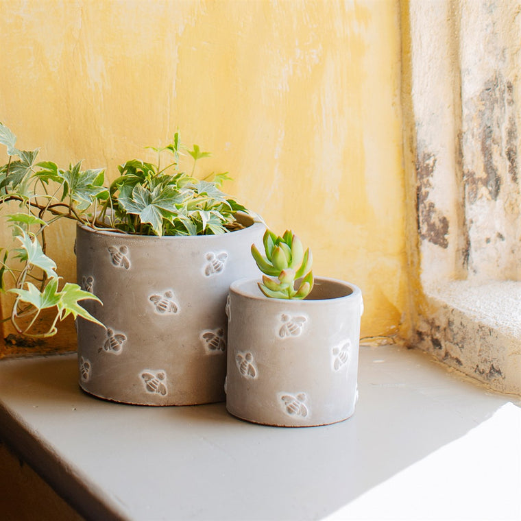 Queen Bee Cement Plant Pot - 2 Sizes