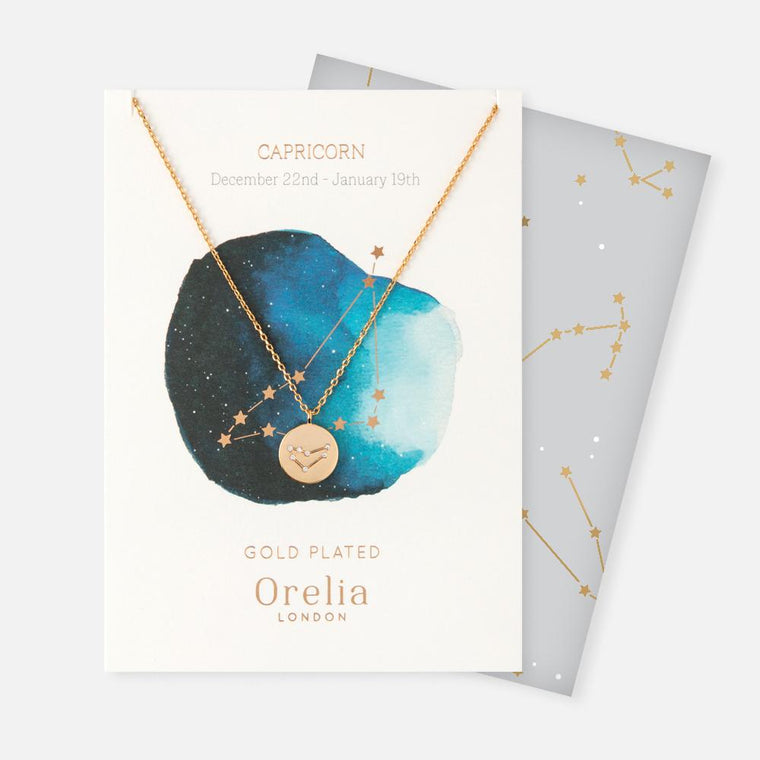 Orelia Constellation Disc Necklace