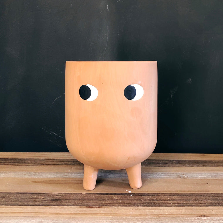 Terracotta Peek-a-Boo Plant Pot