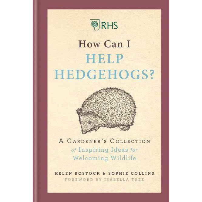 How Can I Help Hedgehogs? - New Book
