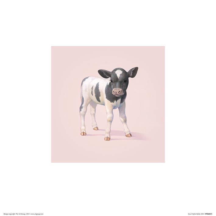 Baby Animal Art Print Cow - 30 x 30cm